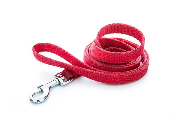 Dog leash picture id186725241?b=1&k=6&m=186725241&s=612x612&w=0&h=en7jnywler6tspkl bkrjrw4chhspompaevr6ehxz10=