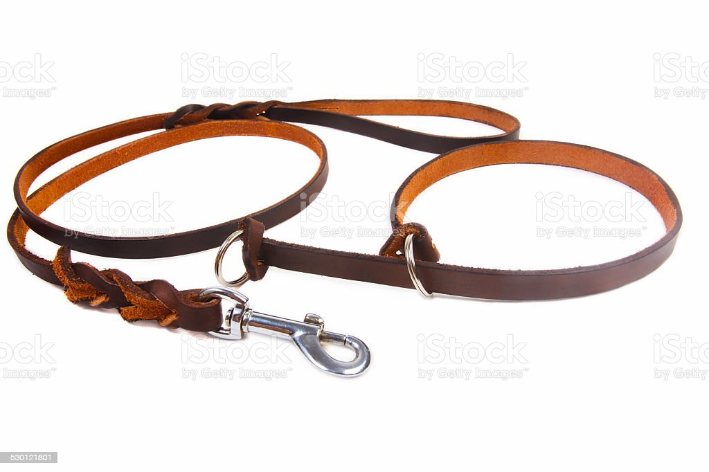 Dog leather leash and collar stock photo