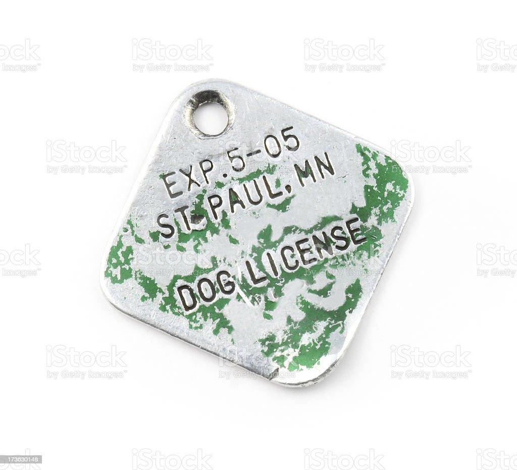 Dog License stock photo