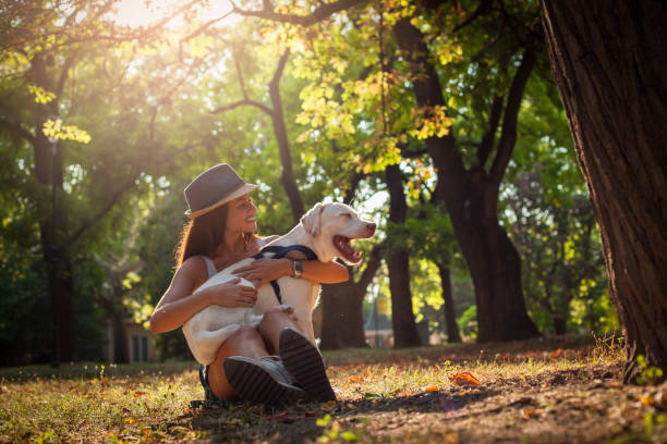 Dog love. Owner with dog,in park. roundworm stock pictures, royalty-free photos & images