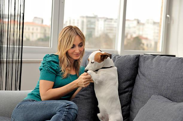Pies Miłośnik – zdjęcie