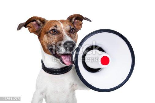 istock dog megaphone 178641275