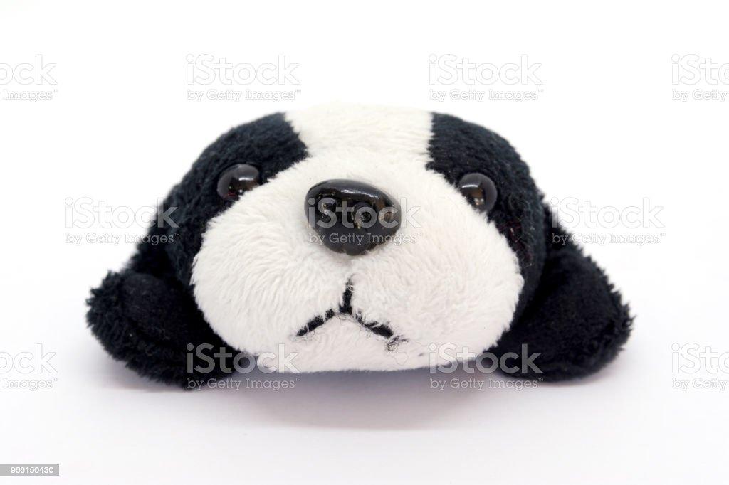 dog on white background - Royalty-free Animal Stock Photo