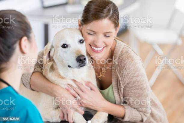 Dog owner hugs yellow lab after good news at the vet picture id853160636?b=1&k=6&m=853160636&s=612x612&h=ynuah1suwjbfjoq6swk6ts6xysvnbpzoyubyucd9ao8=