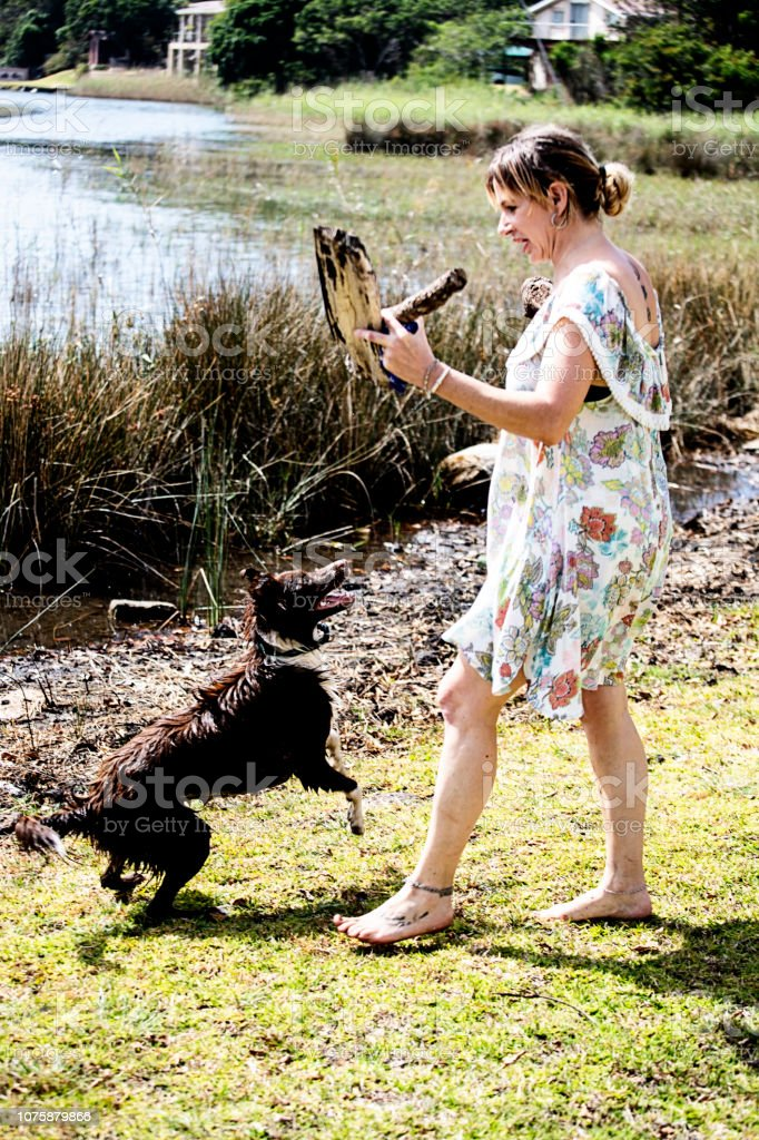 https://media.istockphoto.com/photos/dog-owner-throws-a-stick-for-her-dog-picture-id1075879866