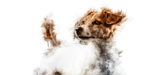 cachorro  - cachorro desenho - fotografias e filmes do acervo