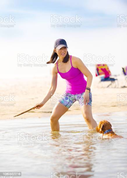 Dog playing fetch on the beach picture id1080332216?b=1&k=6&m=1080332216&s=612x612&h=vu kd sbx z9kmjadui3vat1q9wdh0dwmi8y1zbbhek=
