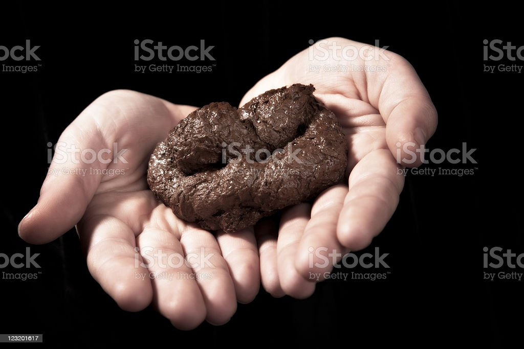 Dog poo offering stock photo