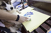 Dog putting footprint
