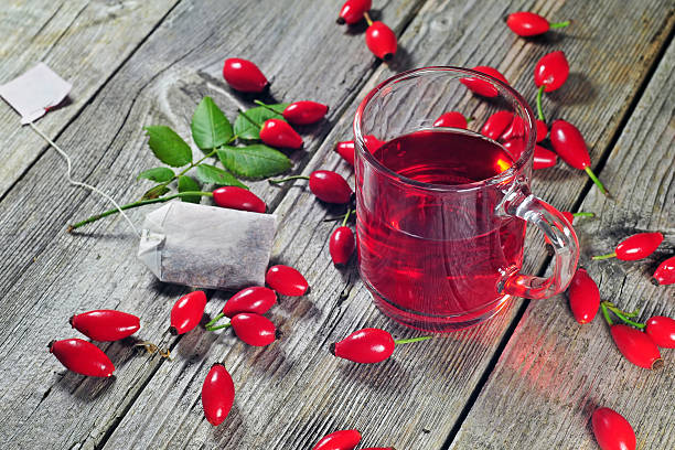 Dog rose tea picture id489005116?b=1&k=6&m=489005116&s=612x612&w=0&h=hamnldk8mo8anork 6revkujyxr51roizaaow3ayi4c=