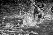 A dog runs and jumps into water, shot from behind with water splashing
