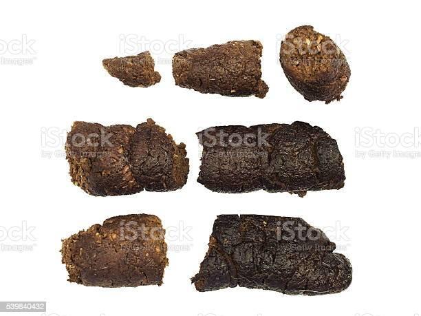 Dog shit poo poop dung picture id539840432?b=1&k=6&m=539840432&s=612x612&h=cynfwo pn0 w0nlbapv58nhe5a3k6z2hkemqv08mbpk=