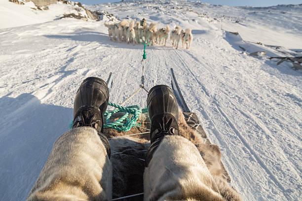 Hundeschlittenfahren selfie in Grönland mit Füßen in den Vordergrund – Foto