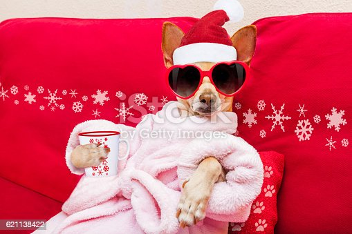 a little chihuahua dressed as a rapper wearing gold chains, cap jeans,tenis and a basketball shirt with a boom box   http://www.istockphoto.com/file_search.php?action=file&lightboxID=7755655]http://i28.photobucket.com/albums/c204/marianaalija/contemporary-2.jpg