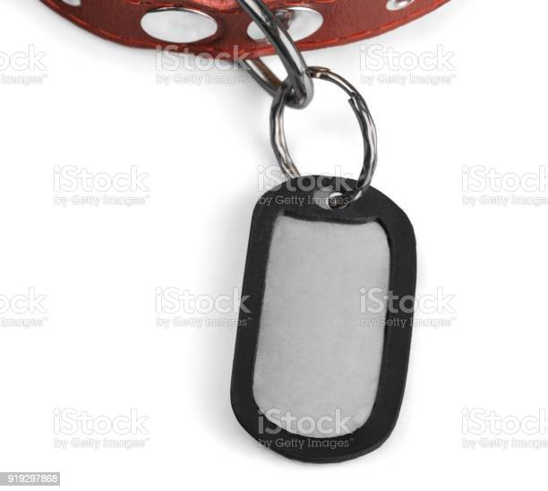 Dog tag picture id919297868?b=1&k=6&m=919297868&s=612x612&h=ho5o2fmcb r7xrnlwhytc2mksuqjokdefk truislua=