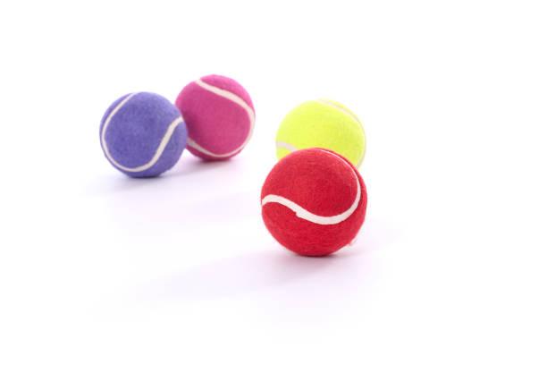 dog tennis balls - hondenkluif stockfoto's en -beelden