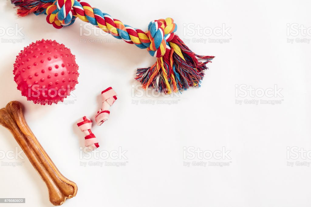 Dog toys set: colorful cotton dog toy and pink ball on a white background royalty-free stock photo