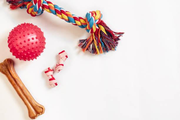 hond speelgoed set: kleurrijke katoenen hond speelgoed en roze bal op een witte achtergrond - hondenkluif stockfoto's en -beelden