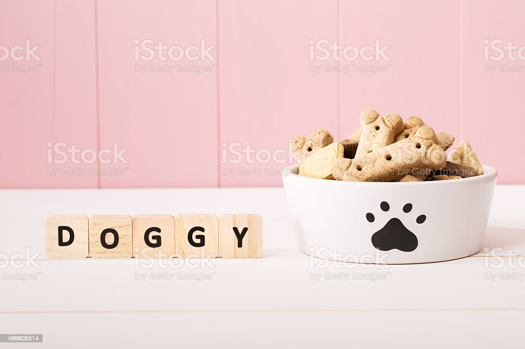 Dog treats on a white bowl stock photo