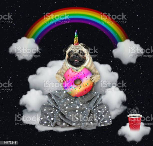 Dog unicorn with a donut on the cloud picture id1141732481?b=1&k=6&m=1141732481&s=612x612&h=myyudazphmsrmctsgkxgcu2iboqg27jphuesdibxono=