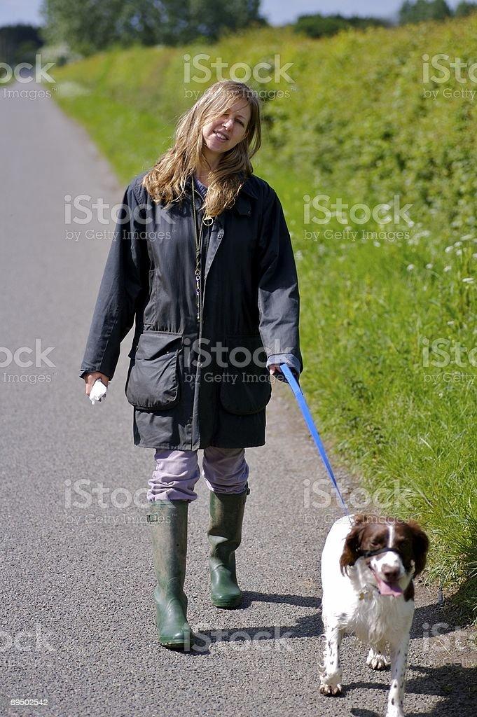 Dog-Walker. zbiór zdjęć royalty-free