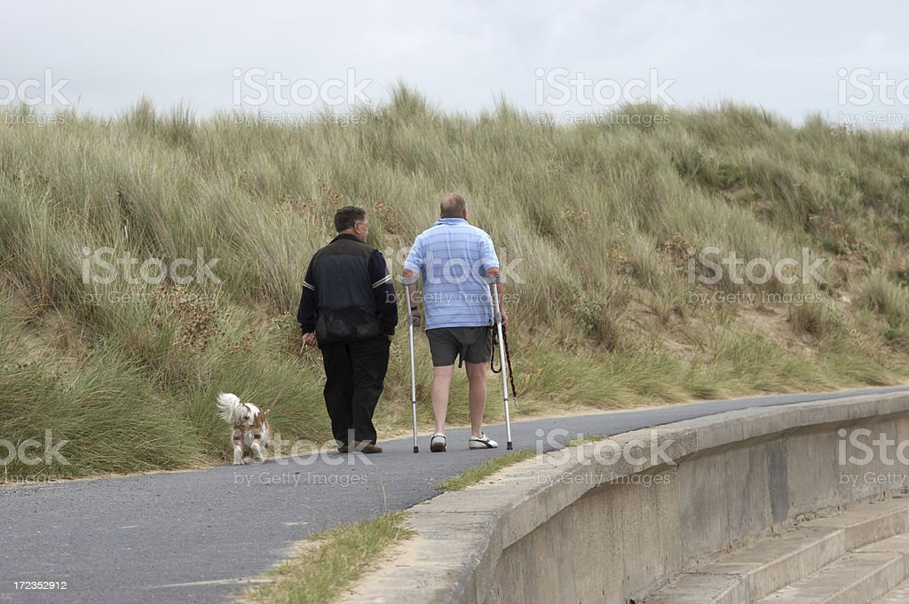 Dog walkers at the beach man on crutches royalty-free stock photo