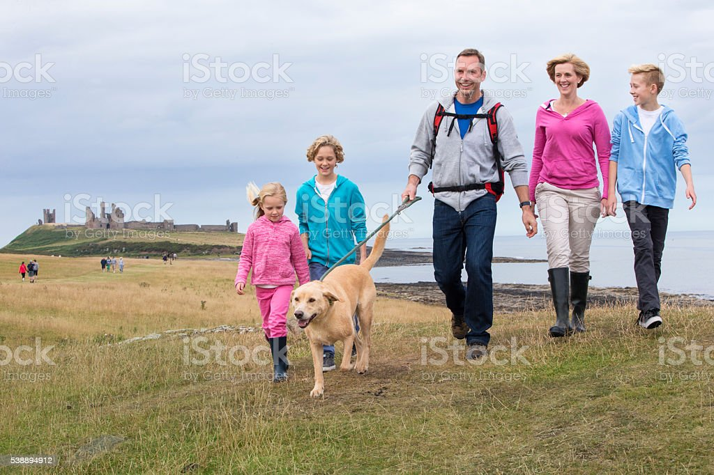 Dog Walkers stock photo