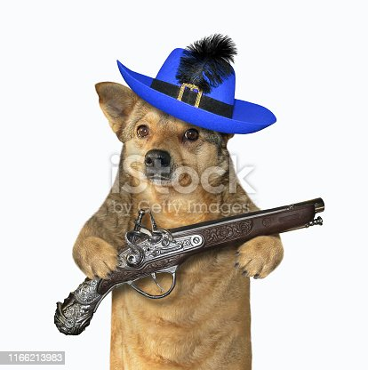 The dog musketeer in a blue hat with a feather holds a flintlock pistol. White background. Isolated.