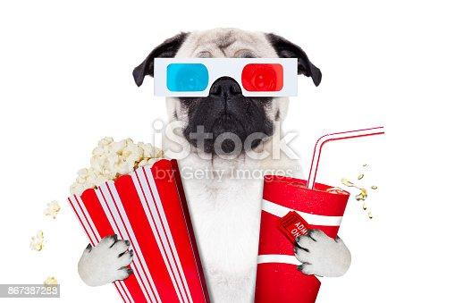 istock dog watching the  movies 867387288