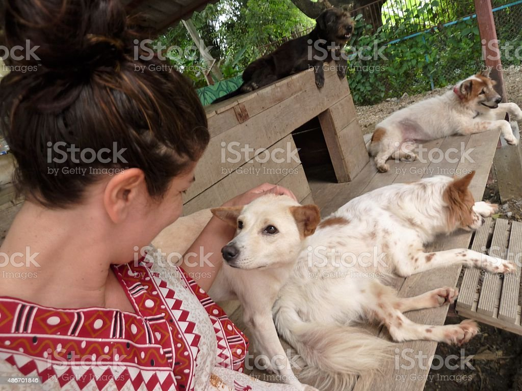 Dog whisperer stock photo