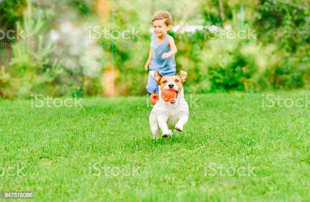 Dog with ball in mouth runs from kid playing chase game at summer picture id947315086?b=1&k=6&m=947315086&s=612x612&h=4niqurwzvqszaj7i4mijqo1i4qkibt3x xjazmmj0yq=