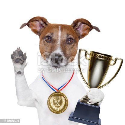 istock Dog with paw raised, holding a trophy and wearing a medal 161868391