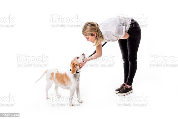 Dog with woman are posing in studio isolated on white background picture id854260490?b=1&k=6&m=854260490&s=612x612&h=hsncnohmeyffjdww1i6af1krz0h2bw3d5hwkmsdtg k=