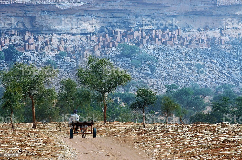 Dogon man with cart approaching village stock photo