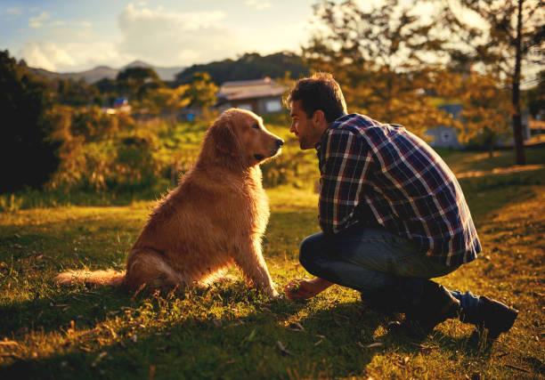 Dogs are the most loyal friends youll ever have picture id968879008?b=1&k=6&m=968879008&s=612x612&w=0&h=ffswkssjtkg8tiwbiporaitv2dxtwmltdug2jnpttju=