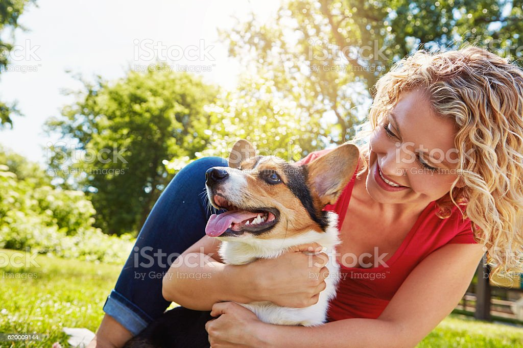 Dogs deserve your undivided attention foto de stock royalty-free
