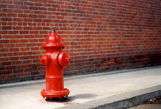 Dog's Eye View A nice looking bright red fire hydrant. fire hydrant stock pictures, royalty-free photos & images