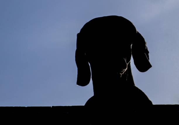 Dogs head silhouette with blue sky beautiful background picture id1085754498?b=1&k=6&m=1085754498&s=612x612&w=0&h=oisidsdpgz2m6zxse5ibgfhch5x7vhbpiqjgopjkndo=