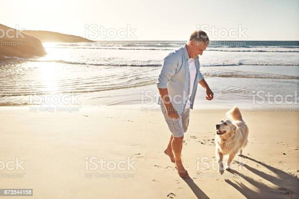 Dogs love the beach and whats not to love picture id673344158?b=1&k=6&m=673344158&s=612x612&h=zxfpadkyi64wiamlj9emo1u9idgjo6whb1jsdy h7vy=