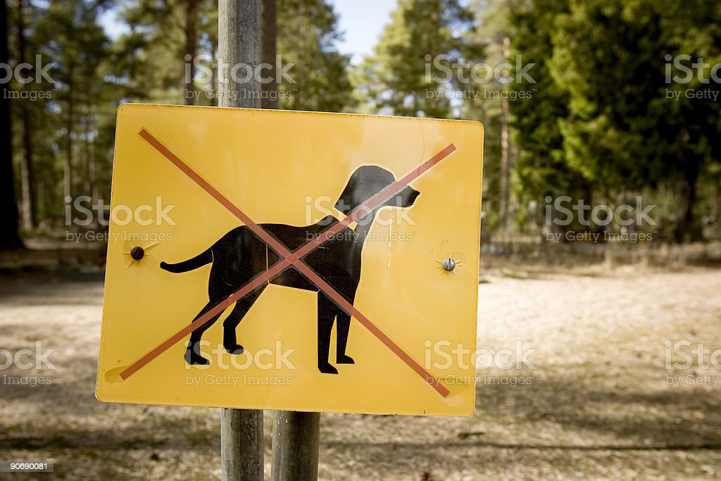 Dogs not allowed royalty-free stock photo