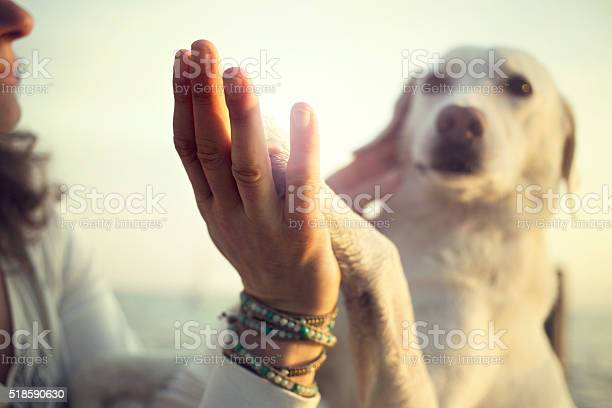 Dogs paw and mans hand gesture of friendship picture id518590630?b=1&k=6&m=518590630&s=612x612&h=hxoxrtpcx2mf7lqg4kdehdqwhjme93ohwyvyq1qo5b8=