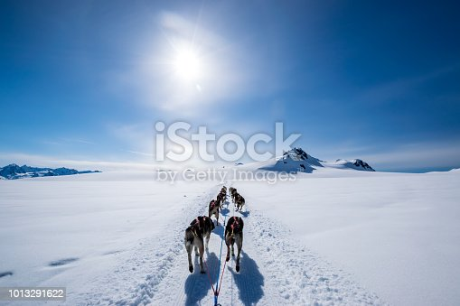 Dogsledding on mountain top under a clear sky with a rare sun halo.