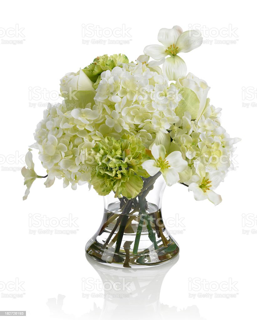 Dogwood And Carnation Bouquet On White Background Stock Photo More