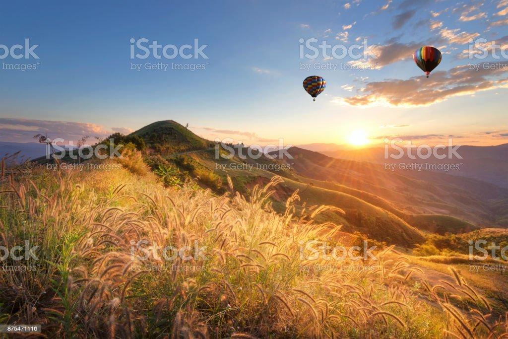 Doi Chang, Chiang Rai, Thailand stock photo