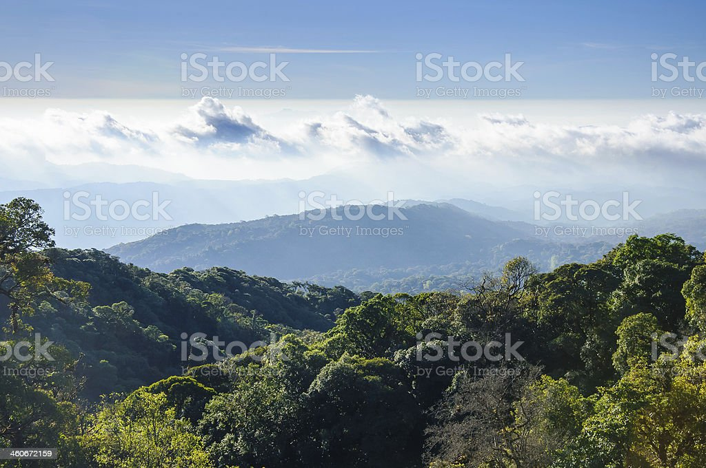 Doi Inthanon national park, ChiangMai, Thailand royalty-free stock photo