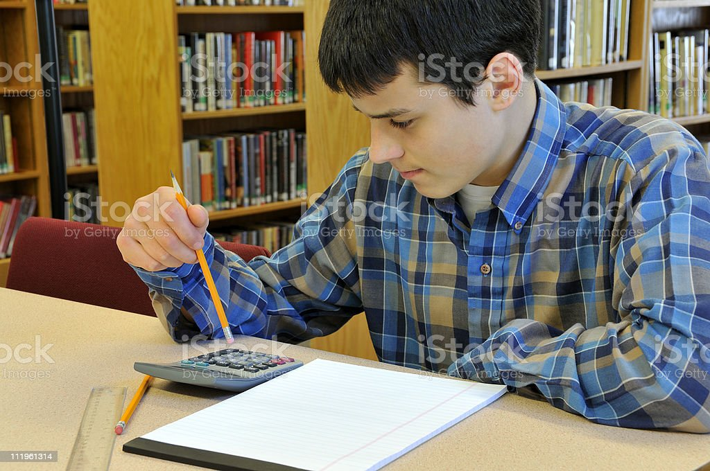 Doing School Work in the Library royalty-free stock photo