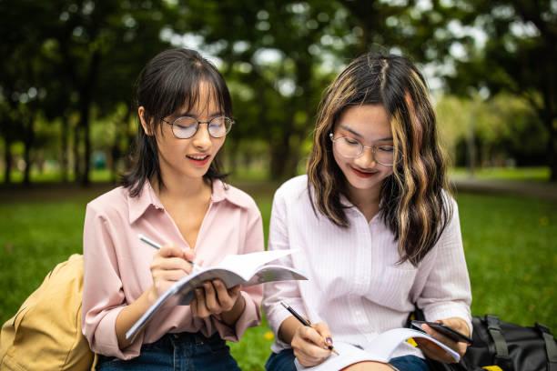 fare i compiti all'aria aperta - two students together asian foto e immagini stock