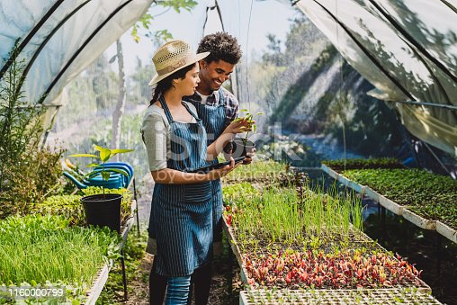 Shot of a young couple using a digital tablet while working in a greenhouse