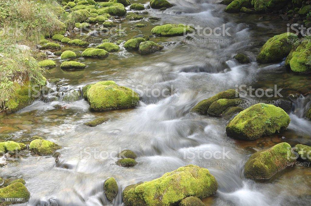 Dolina Koscieliska creek royalty-free stock photo