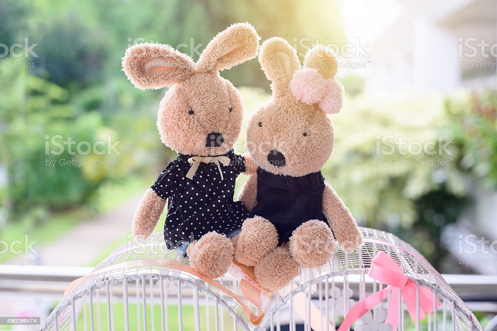 Doll rabbit lovers stock photo